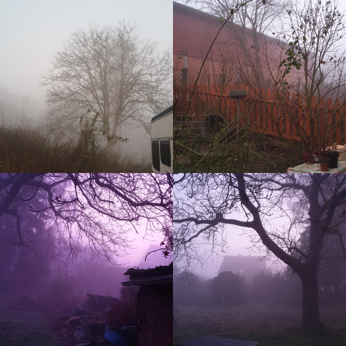 Aufbruch im Nebel