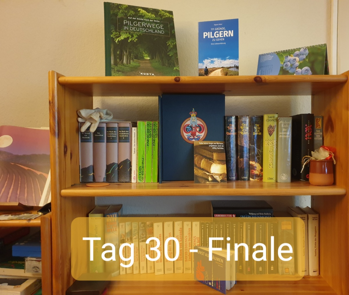 30 Days Book Challenge – Tag30