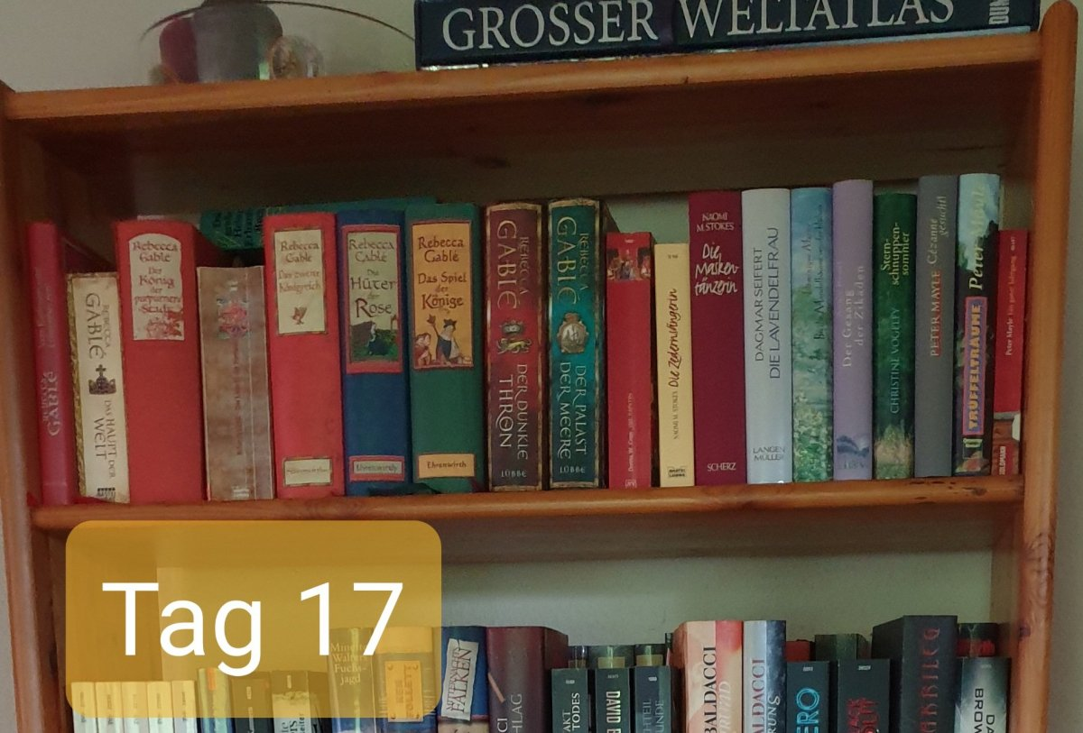 30 Days Book Challenge – Tag 17